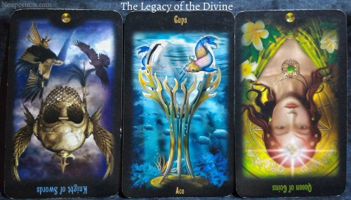 The Legacy of the Divine: Knight of Swords reversed, Ace of Cups, & Queen of Coins reversed.